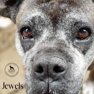 . Jewels .