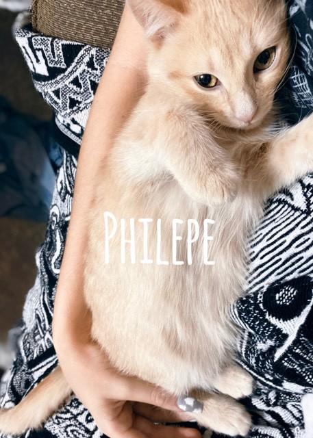 Philepe 1