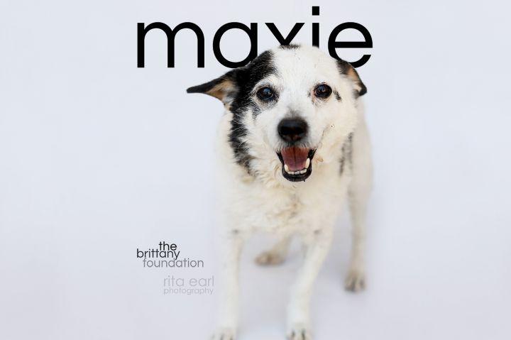 Maxie 4