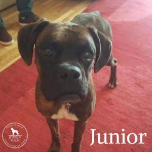 . Junior .