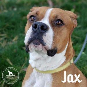 . Jax .