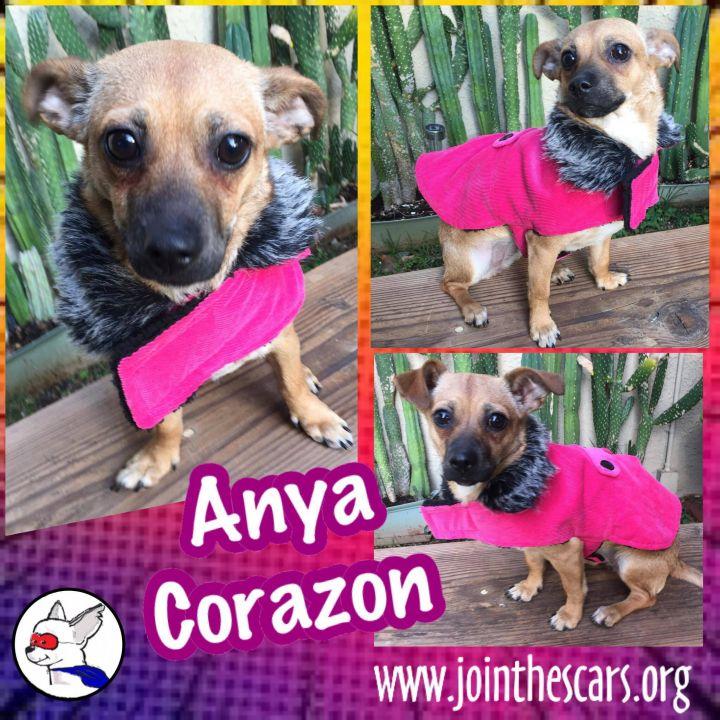 Anya Corazon 2