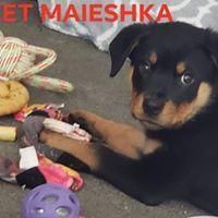 Maieshka (Meeka) 5