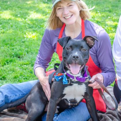 Swayze, an adoptable Pit Bull Terrier Mix in Eagle, ID