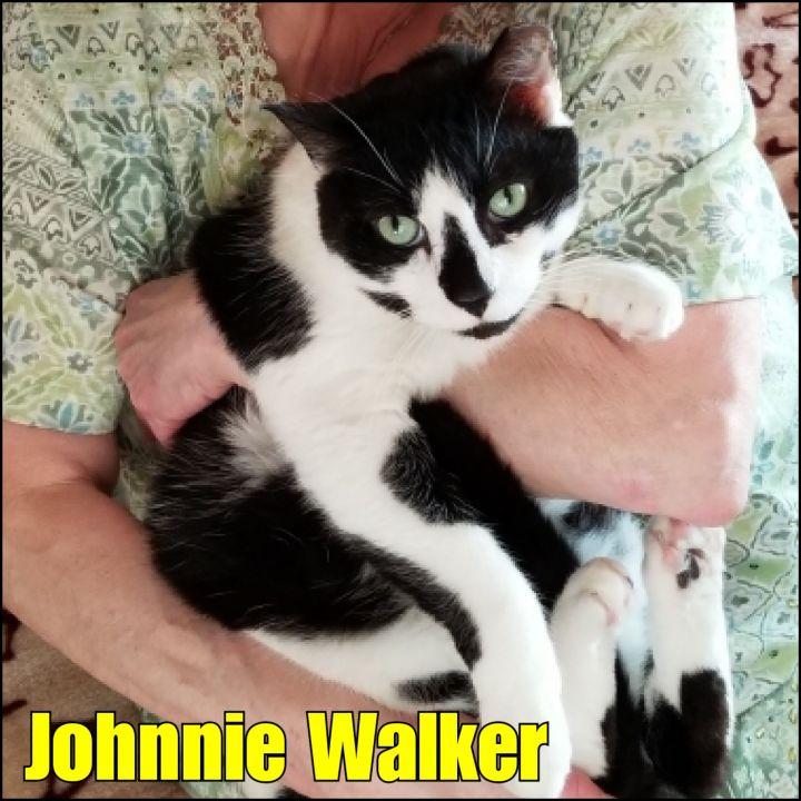Johnnie Walker 1