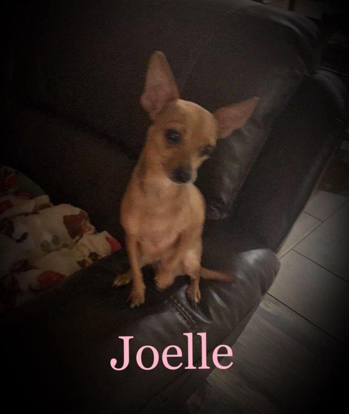 Joelle 1