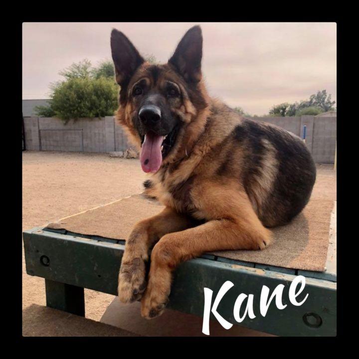 Kane 4