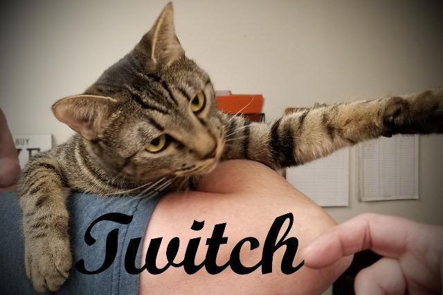 Twitch - Special Needs