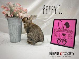 Petey C.