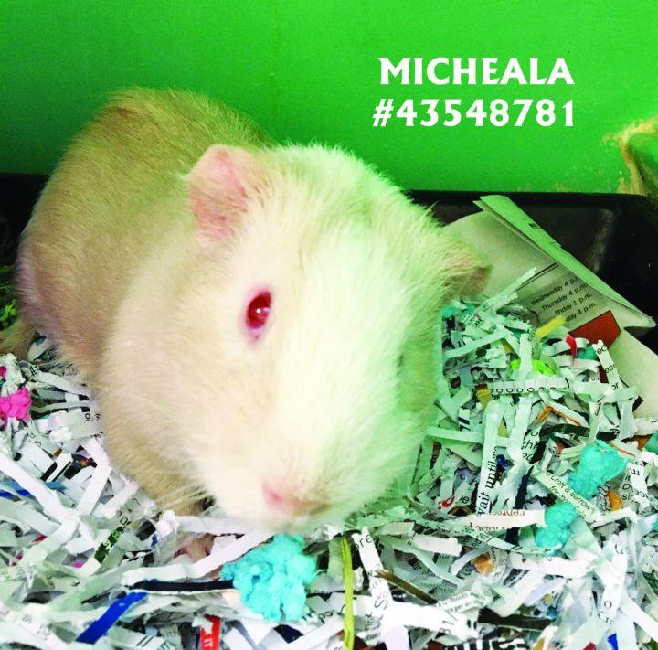 Michaela 1