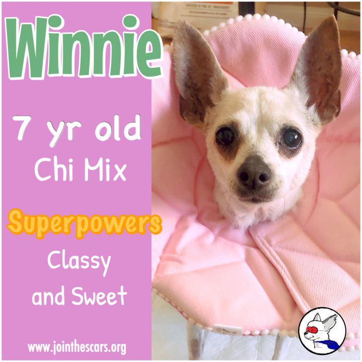 Winnie 2