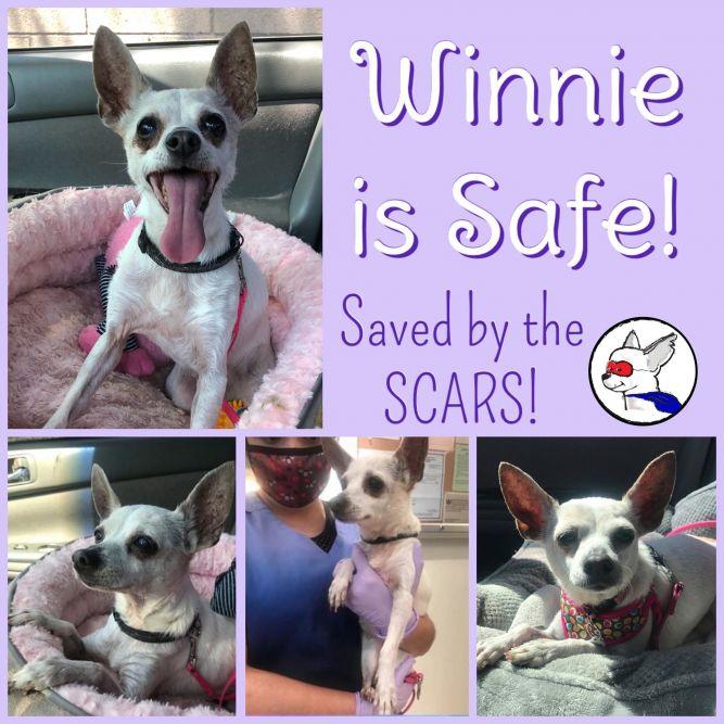 Winnie