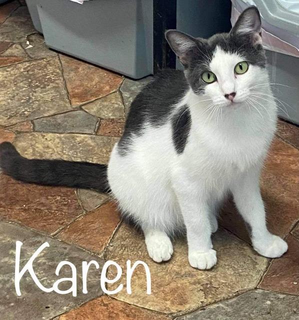 Karen 3