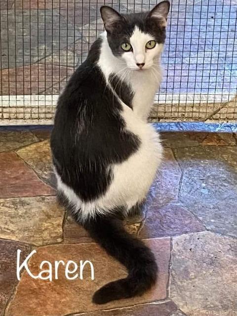 Karen 4