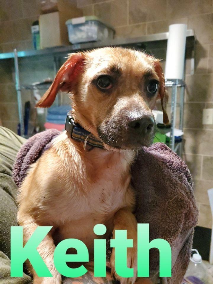 KEITH 1