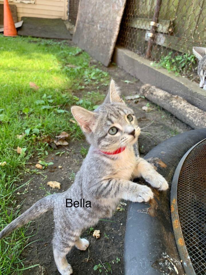 Bella and Sofia 2