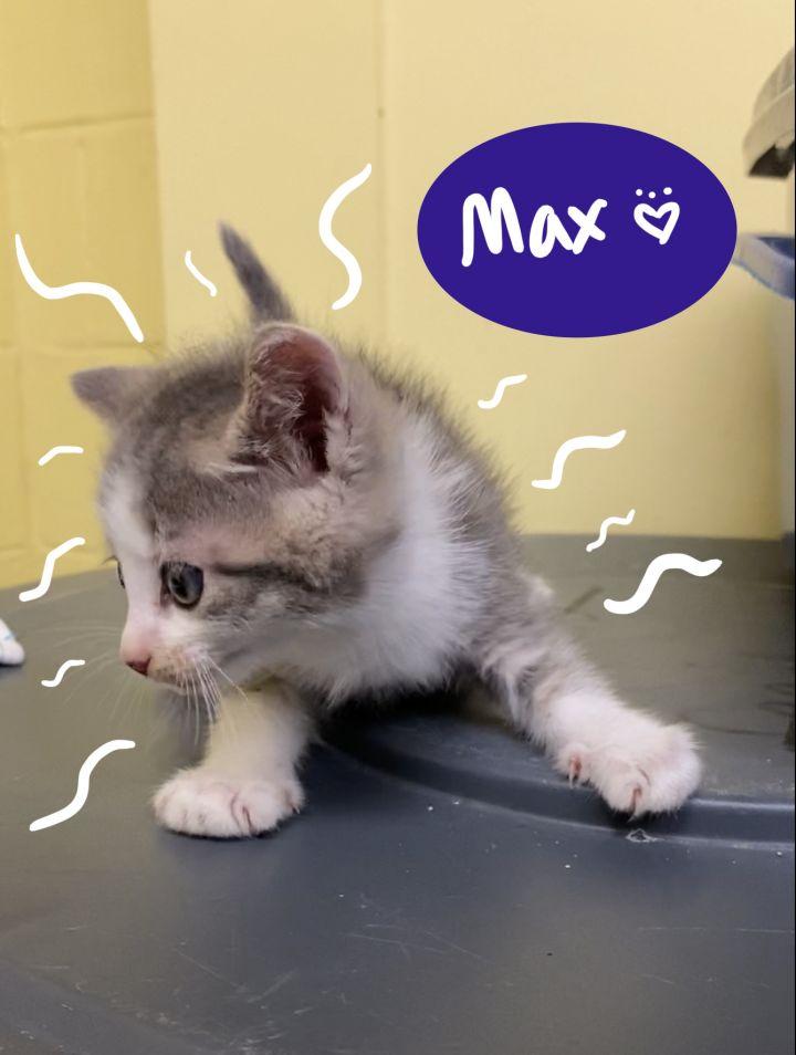 Max 1