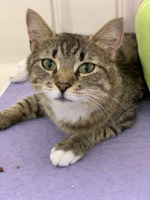 This petite 2 year old girl has an engaging personality Shes fun affectionate and outgoing Shes