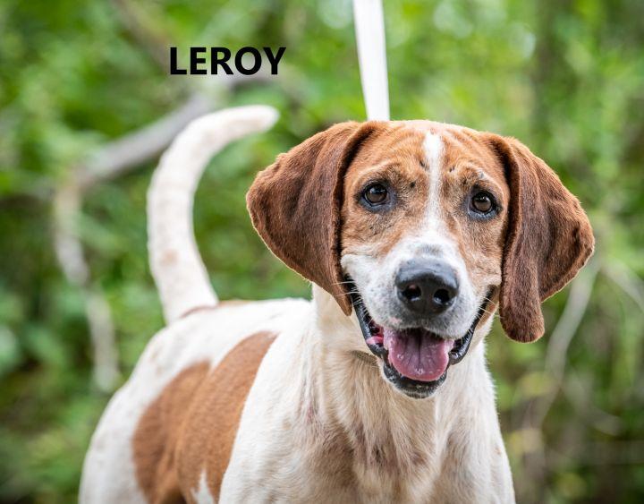 Leroy 1