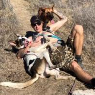 PONO, an adoptable Cattle Dog & Shepherd Mix in Point Richmond, CA