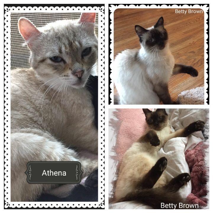 Athena & Betty Brown 1