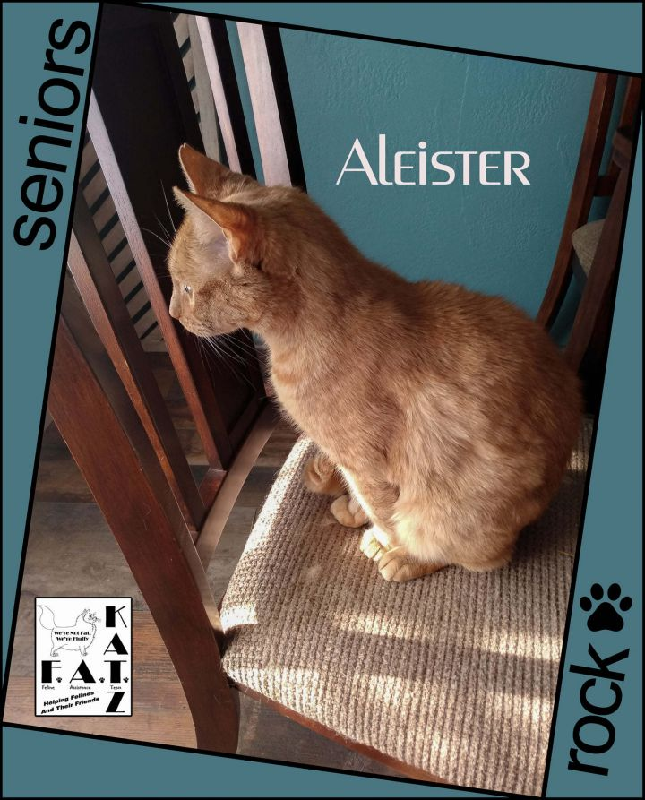 Aleister 4
