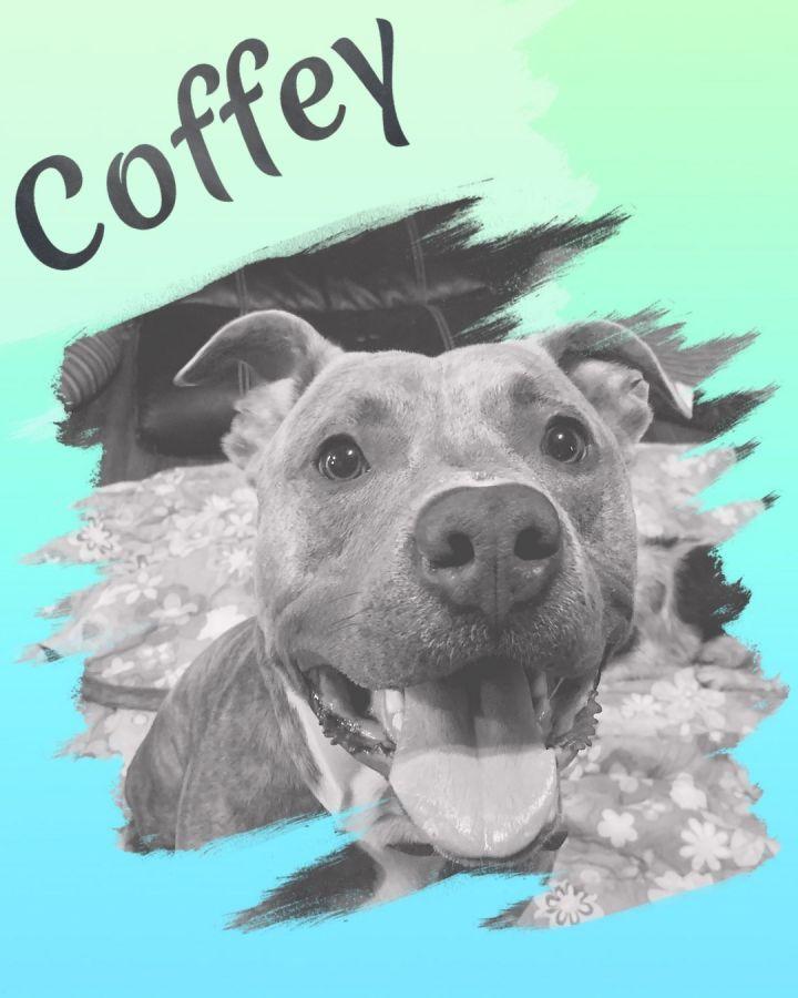 (John) Coffey 2