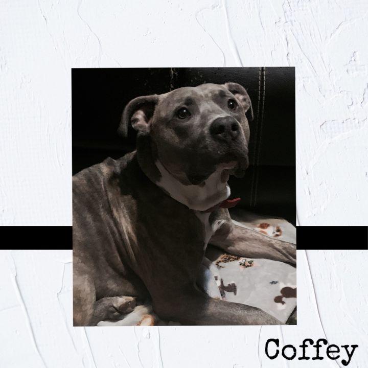 (John) Coffey 4