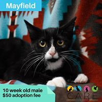 If you would like to schedule a time to see our animals please go to our website carejeffcountycom