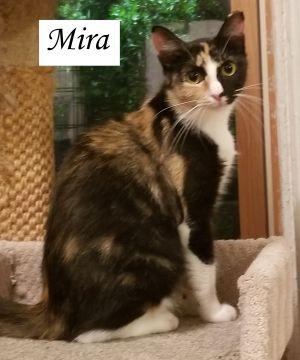 Maya and Mira