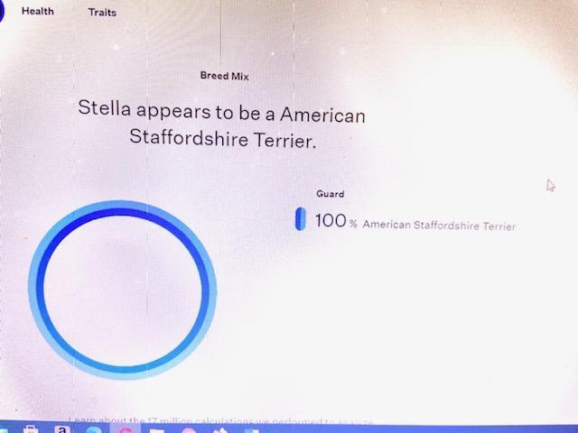 Stella ADOPTED:) 6