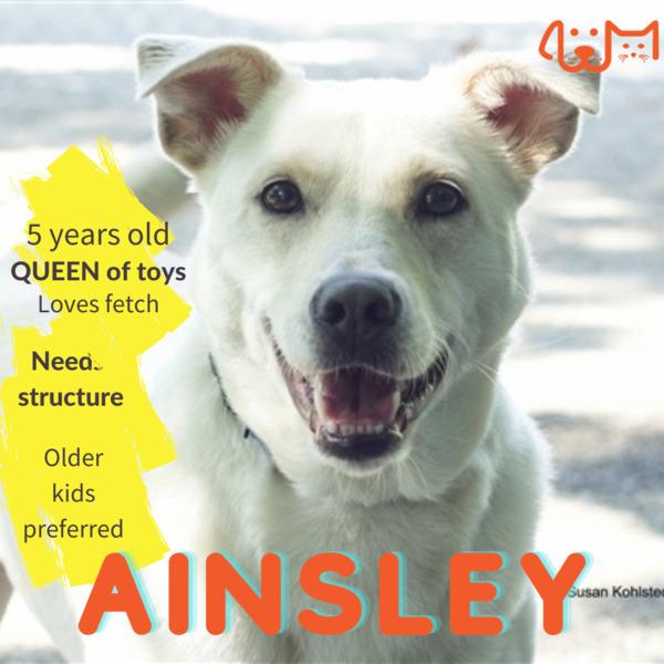 Ainsley 3