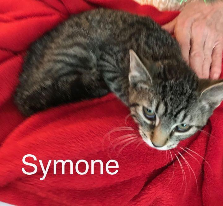 Symone 1