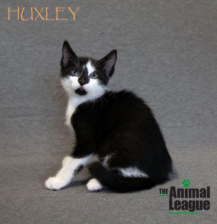 Huxley 1