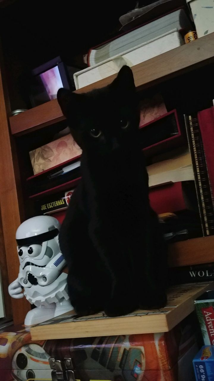 Peppers & Vader 6