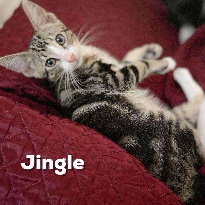Jingles 1