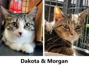 Dakota and Morgan