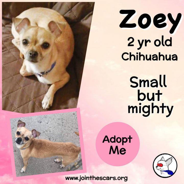 Zoey 5