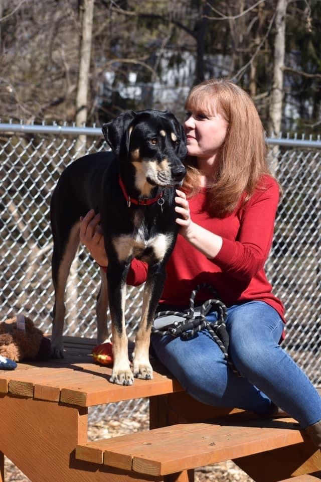 Lucinda, an adoptable Hound Mix in Highland, MD
