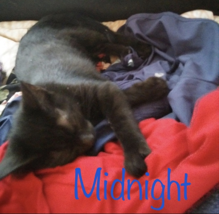 Midnight 1