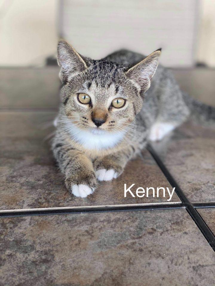 Kenny 1