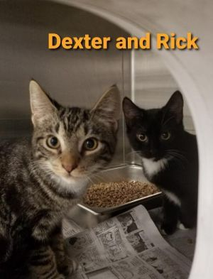 Dexter & Rick