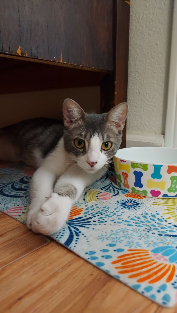 Uncle Louie 1