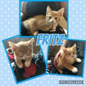 Fritz and Maximillian
