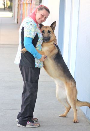 Gemma von Gerbstedt is a beautiful 2 year-old German Shepherd Outgoing and enthusiastic this girl