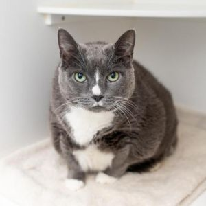 Big and fabulous Edna is here to give you some love This lovely lady has a whole lot of love