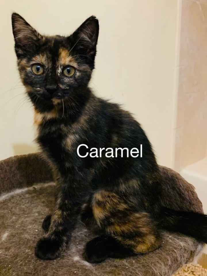 Carmela 1