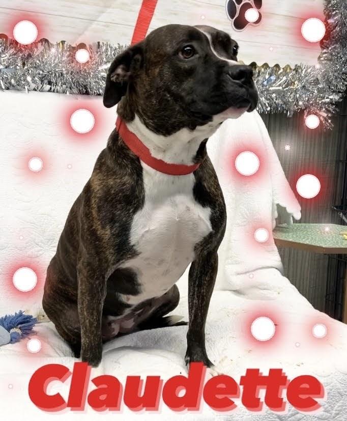 Claudette 2