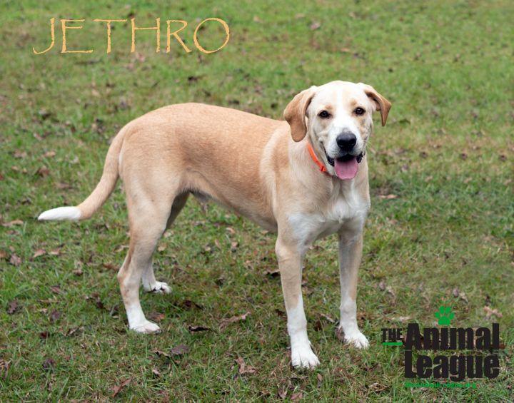 Jethro 2
