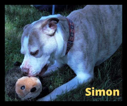 Simon 1